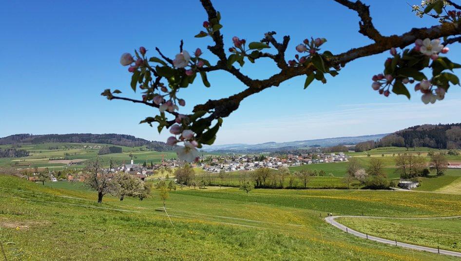 Rickenbach Landschaft 946x535 - Parkplätze zu vermieten per sofort am Kirchplatz 1