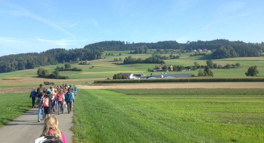 Herbstwanderung 3. 4.Kl .04.09.2018 6 527x286 - Herbstwanderung 3./4.Klassen Rickenbach