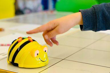 """20190402 Bee Bots Primarschule 12 386x257 - """"Bee-Bots"""" erobern die Schulzimmer"""