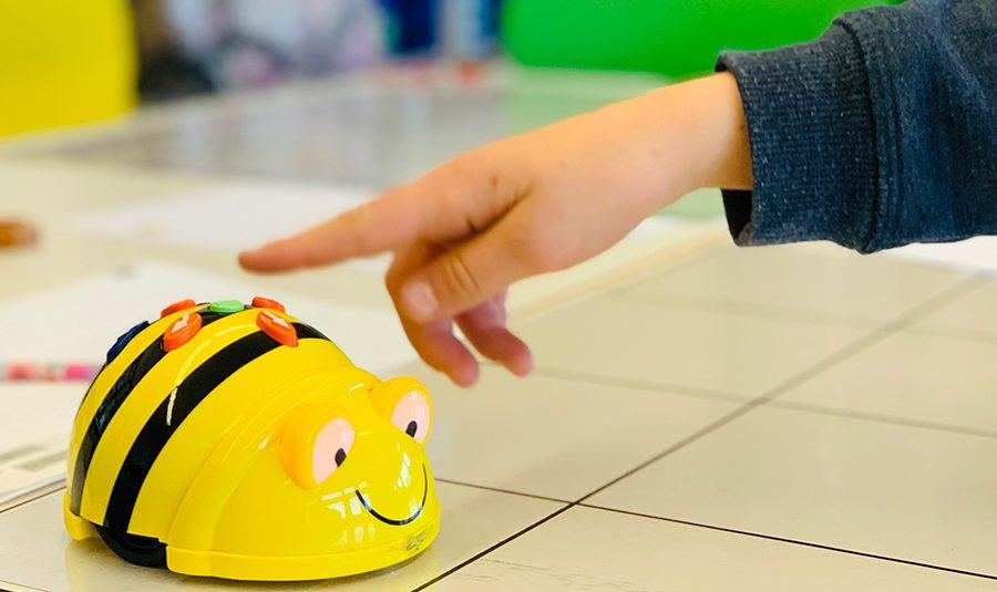 """20190402 Bee Bots Primarschule 12 900x535 - """"Bee-Bots"""" erobern die Schulzimmer"""