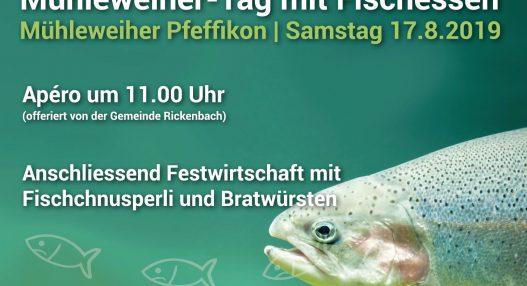 Mühleweiher 2019 527x286 - Mühleweiher-Tag mit Fischessen