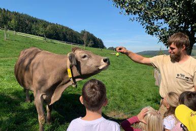 Bauernhofbesuch 20.09.2019 13 386x257 - Bauernhofbesuche 1./2.Klassen Rickenbach