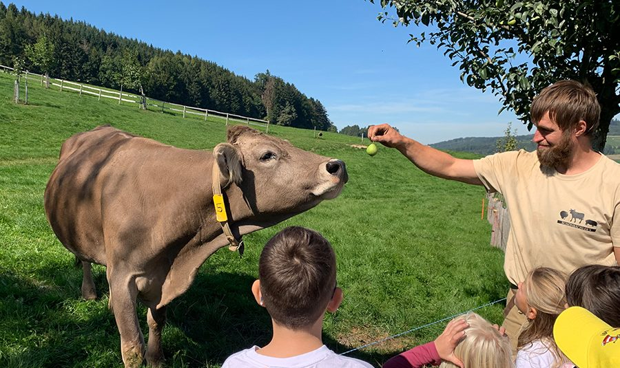 Bauernhofbesuch 20.09.2019 13 900x535 - Bauernhofbesuche 1./2.Klassen Rickenbach