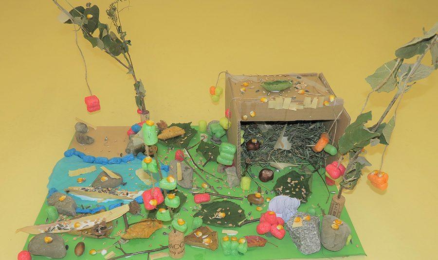 Zoo Gehege 05.11.2020 08 900x535 - Freiarbeit Zoogehege 1./2.Klassen Rickenbach